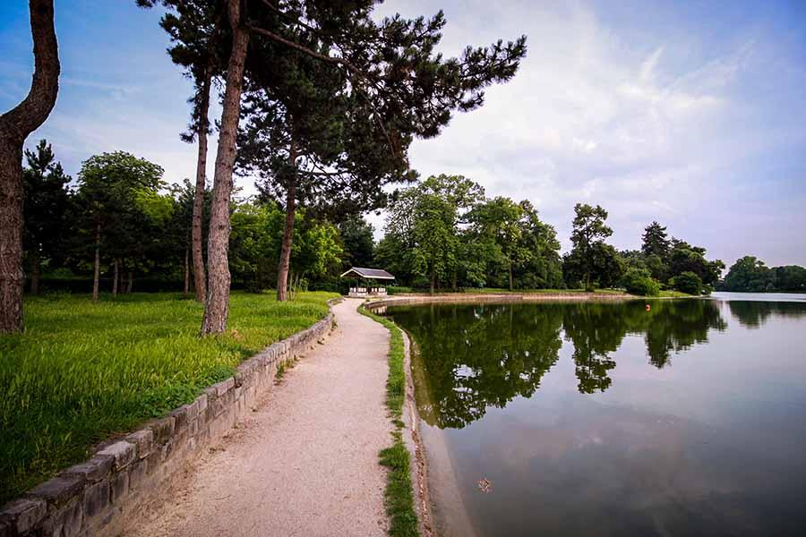 Bois de boulogne au niveau du lac inférieur en été