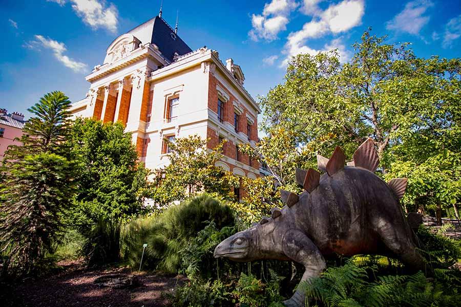Voir des dinosaures à la galerie de paléontologie et d'anatomie comparée dans le jardin des plantes, une superbe sortie en famille