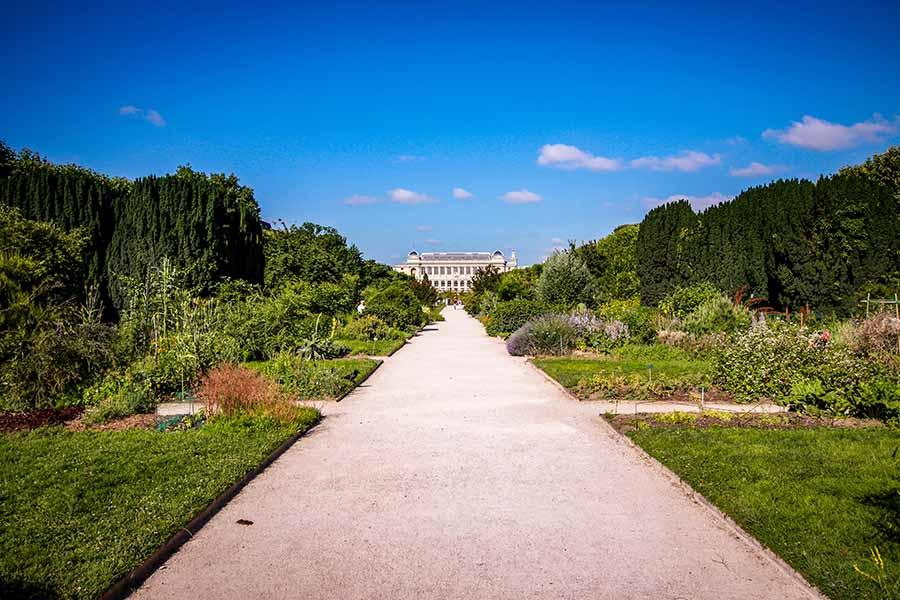 Le jardin des plantes est une idée originale pour visiter Paris avec des enfants