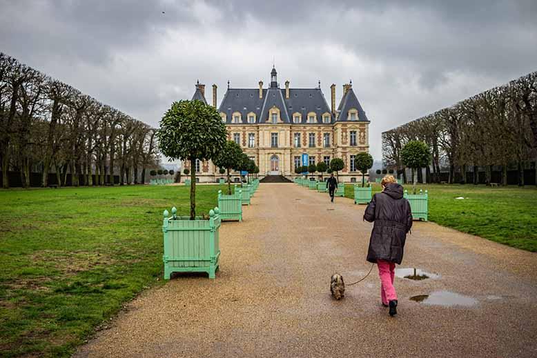 Femme promenant son chien dans l'allée principale du Parc de Sceaux, Chateau de Sceaux, hiver, arbres nus et pelouses