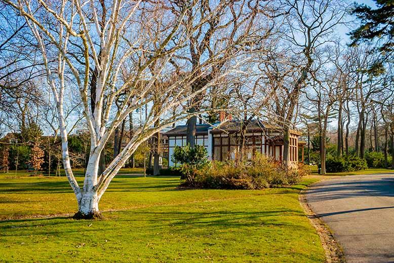 Jardin du Pré-catelan dans le Bois de Boulogne par beau temps, ciel bleu, soleil en hiver
