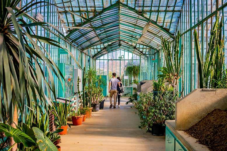 deux visiteurs dans les serres du Jardin des serres d'auteuil dans le Bois de Boulogne