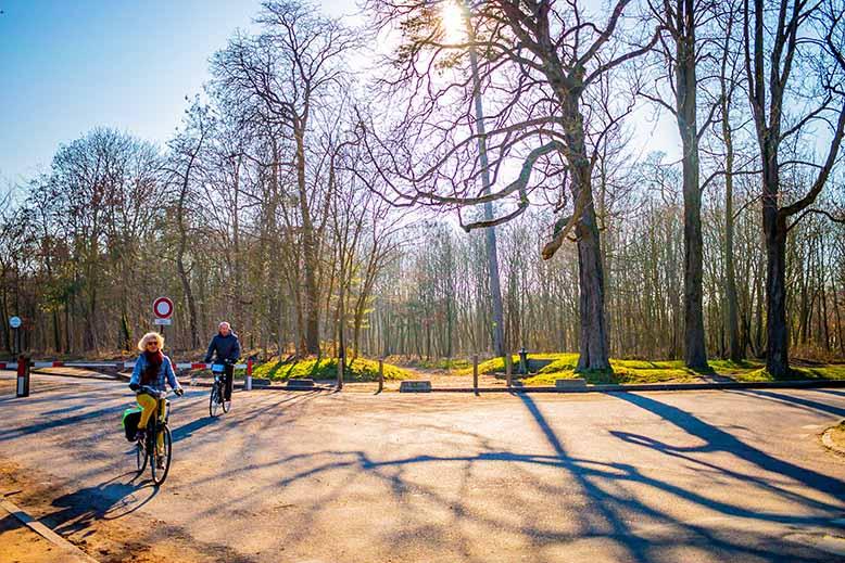 Bois de Boulogne couple de personnes agés en vélo